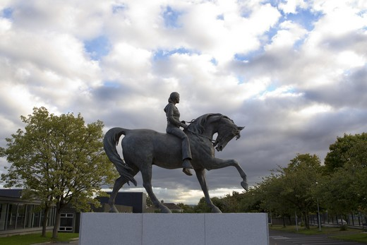John BYRNE, Misneach / Courage (2010). Ballymun (Dublin, Ireland)